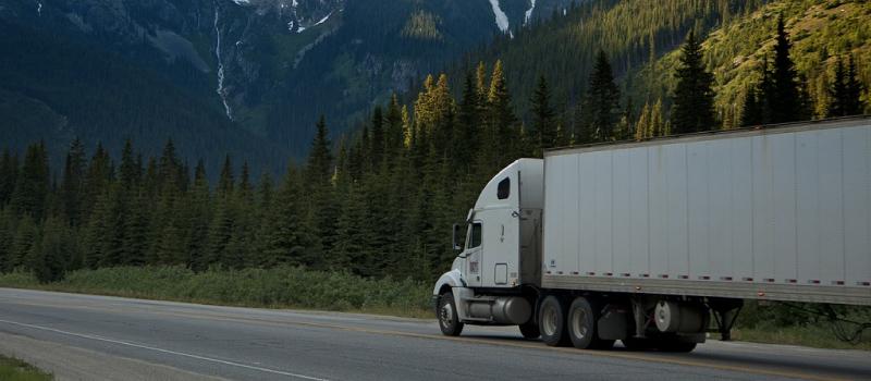 Camión, para conducirlo tienes que sacarte el carnet c.